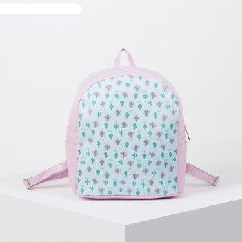 Рюкзак молодёжный, отдел на молнии, цвет голубой/розовый