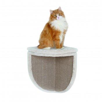 доски для кошек