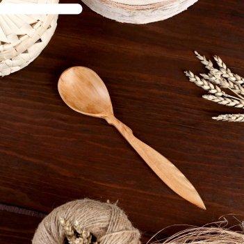 Ложка столовая, можжевельник, 5х24 см