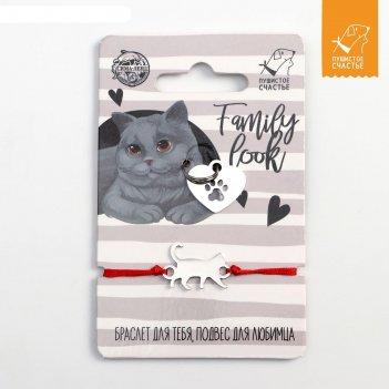 Family look_браслет на руку и подвес для питомца британский кот