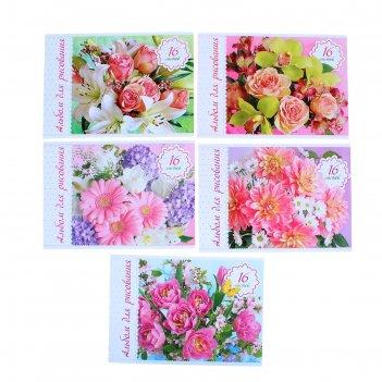 Альбом для рисования а4, 16 листов на скрепке нежные цветы 5 видов микс