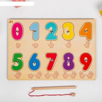 Пазл цифры (магнитики)   ди314