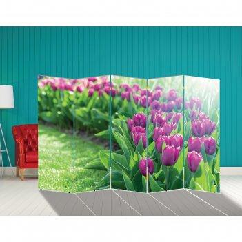 Ширма тюльпаны. декор 12 250 x 160 см