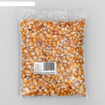 Семена кукуруза посевная, 0,5 кг