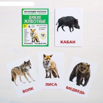 Обучающие карточки по методике г. домана «дикие животные»