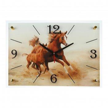 Часы настенные, серия: животный мир, лошадь с жеребёнком, 40х56 см