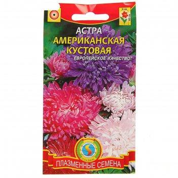 Семена цветов астра американская кустовая смесь, о, 0,3 г