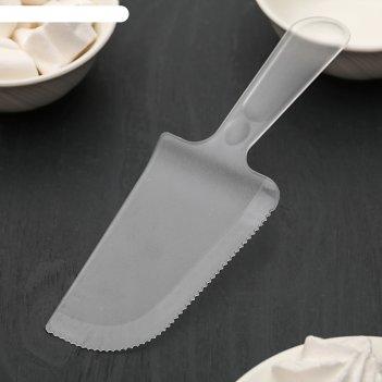 Лопатка кондитерская «блеск», 18,5x6 см, цвет прозрачный