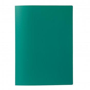 Папка с 60 прозрачными вкладышами а4, 500 мкм, calligrata, песок, зелёная