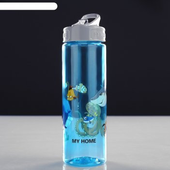 Бутылка для воды 600 мл, микс, 9х24 см