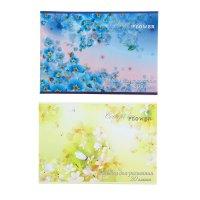 Альбом для рисования а4, 20 листов на скрепке полевые цветы