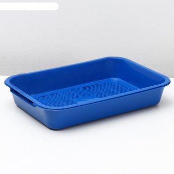 Лоток средний с сеткой, 38,5 х 26 х 6,5 см, синий