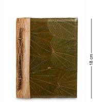 16-053 блокнот гербарий (о.бали) ср.