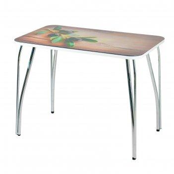 Стол прямоуголный с фотопечатью оливковая ветвь 1000х600х757 столешница ст