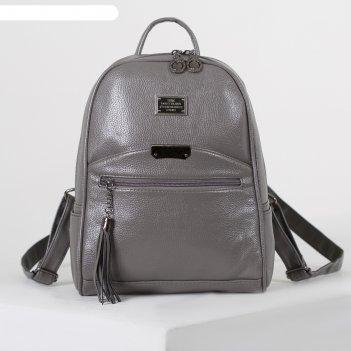Рюкзак молод l-9716, 25*10*32, отд на молнии, 2 н/кармана, 2 бок, серый