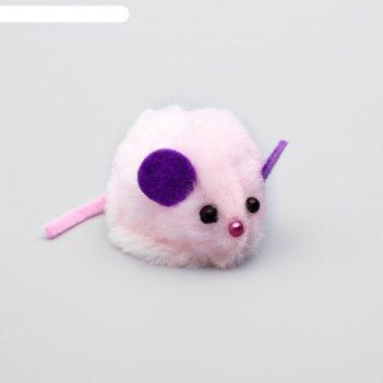 Игрушка для кошачьей мяты мышь, на липучке, 8 х 4,5 х 4,5 см, микс цветов