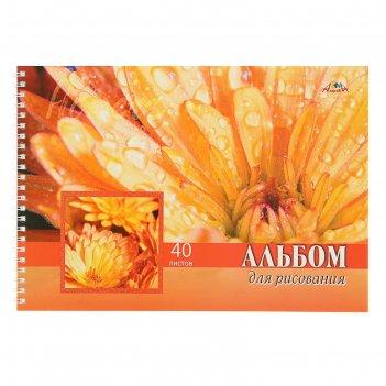Альбом для рисования а4, 40 листов на гребне цветок, глитер