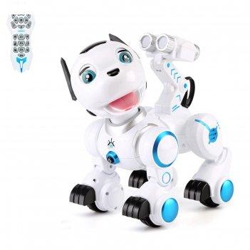 Робот интерактивный радиоуправляемый, программируемый «дружок», световые и