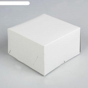 Упаковка на 4 капкейка, 16 х 16 х 10 см