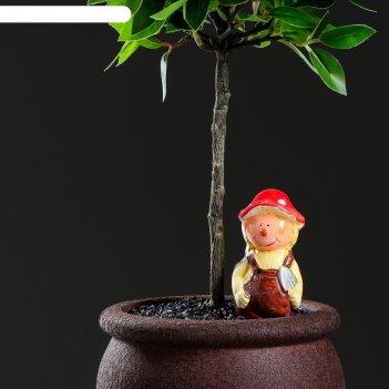 Автополив для комнатных растений человек, микс, 50 мл