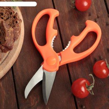 Ножницы кухонные ловкач 19 см