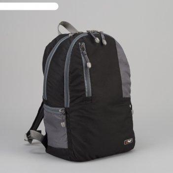 Рюкзак туристический, 21 л, отдел на молнии, наружный карман, цвет чёрный/