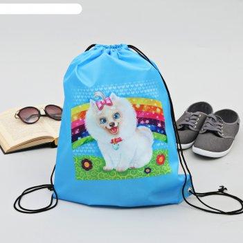 Сумка-рюкзак для обуви собачка, 43 х 38 см