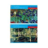 Альбом для рисования а4, 40 листов на гребне классика микс