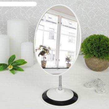 Зеркало на гибкой ножке, зеркальная поверхность — 14,5 x 20,2 см, цвет чёр