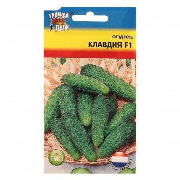 Семена огурец клавдия f1,8-9 шт.