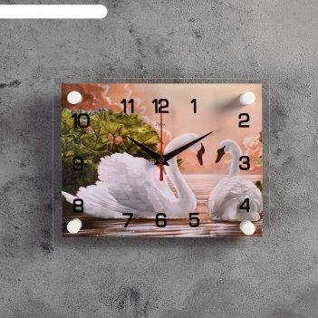 Часы настенные, серия: животный мир, пара лебедей, 20х26  см, микс