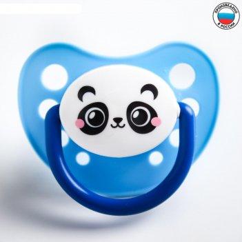 Соска - пустышка силиконовая ортодонтическая панда