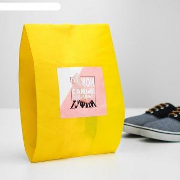 Мешок для обуви мои самые любимые туфли  женский