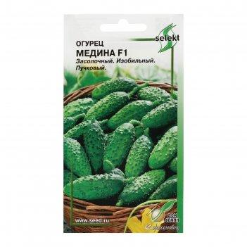Семена огурец ,медина f1, 8 шт