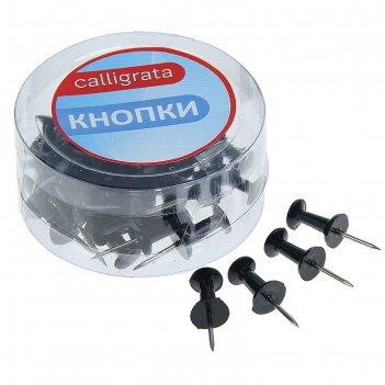 Кнопки силовые черные 40шт в пластиковой коробке calligrata