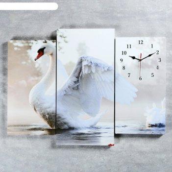 Часы настенные, серия: животный мир, модульные белый лебедь на пруду, 60х8