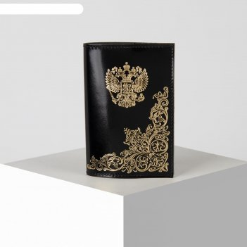 Обложка для паспорта, 9,5*0,3*13,5  народная, черный