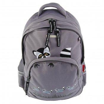 Рюкзак школьный bruno visconti 40 х 30 х 16 см «еноты», серый