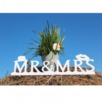 Деревянная заготовка mr&ms