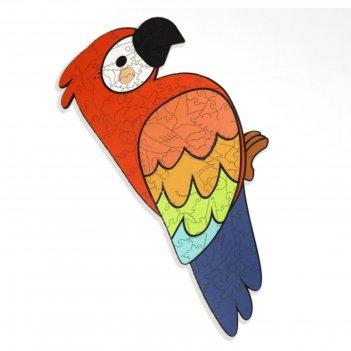 Супер пазл «попугай»