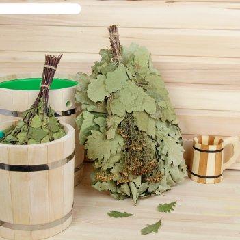 Веник для бани экстра из кавказского дуба с пижмой