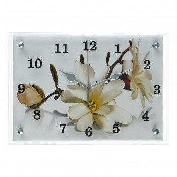 Часы настенные, серия: цветы, орхидея, 25х35  см, микс