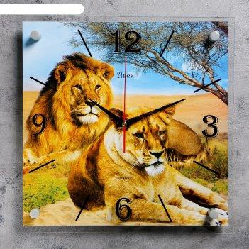 Часы настенные, серия: животный мир, лев и львица, 35х35 см