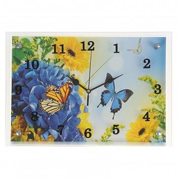 Часы настенные, серия: цветы, бабочки, 25х35  см, микс