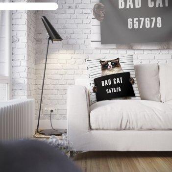 Наволочка декоративная разыскивается кот, 45 х 45 см, вшитая молния