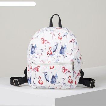 Рюкзак молод ненси, 23*12*28, отд на молнии, н/карман, 2 бок кармана, флам