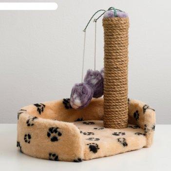 Лежанка с когтеточкой для котят, 34 х 26 х 34 см, джут, микс цветов