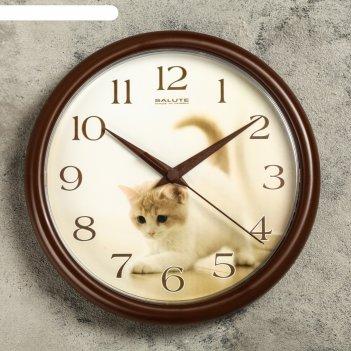 Часы настенные круглые котенок, коричневый обод, 24х24 см