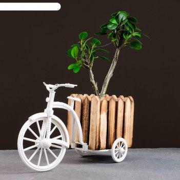 Кашпо-велосипед 26*12*18см