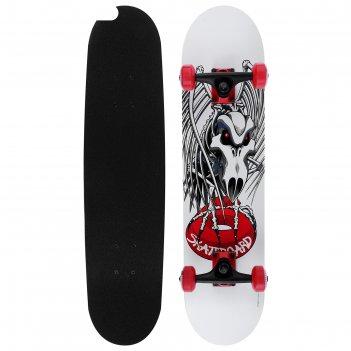 Скейтборд №807, размер 78x20 см, колеса pu d= 50 мм, алюминиевая рама, кан